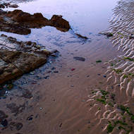 Reflections and ripples by the seashore.