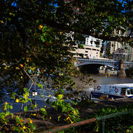River cruiser on the Yarra River.