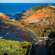 A lot of steps going down to Cape Schanck.