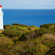 Cape Schanck lighthouse from the signal tower lookout.