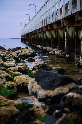 Thumbnail image ofRocks, algae and calm water; Port Melbourne pier,...