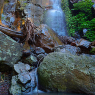 Festoon Falls, rainforest environment, a torrent of water enough to move large boulders when it is raining, a trickle when it's not.