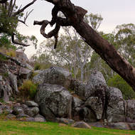 Granite tors have tumbled down over the ages around the Coomba waterhole.