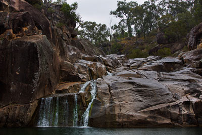 Thumbnail image ofFalling rain dots the waterhole surface at Coomba...