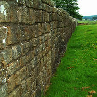 Pastures green: Hadrian's Wall forms a useful fenceline on a farm.