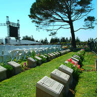 Grave markers and the lone pine at the Lone Pine cemetery and memorial to the ANZACs on the Gallipoli (Turkish Gelibolu) peninsula.