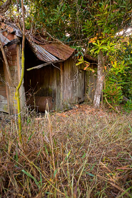 Thumbnail image ofAbandoned and collapsing farm shed.