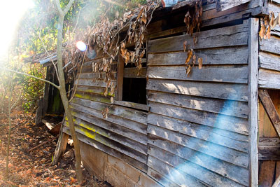 Thumbnail image ofAbandoned and collapsing farm shed in the early...