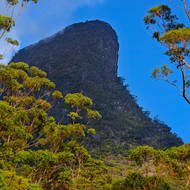 Mount Warning, 1135 metres above sea level, stands out like a beacon in the morning light.