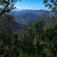 View north from the side of Mount Warning towards border ranges.