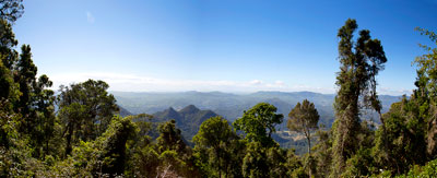Thumbnail image ofPanoramic view north from the side of Mount Warning...