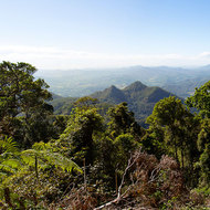 Panoramic view north from the side of Mount Warning towards border ranges.
