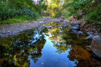 Thumbnail image of Afternoon light and reflections in Korrumbyn Creek.