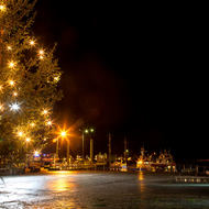 Dockside Christmas tree and a search and rescue boat.