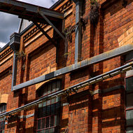 Well drained but somewhat over grown brick walls of workshop buildings.