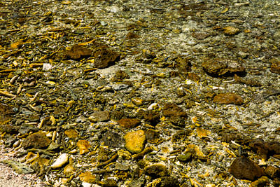 Thumbnail image ofBroken coral make up the beach and shore line...