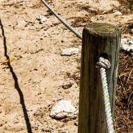 Trail marker, protect the coral cay.