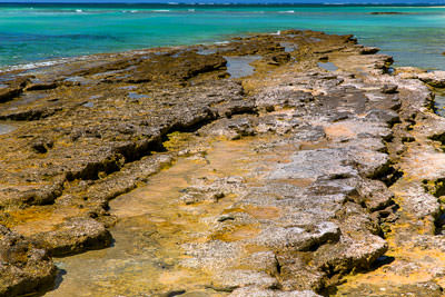Thumbnail image ofLow tide exposes the coral reef plateau.
