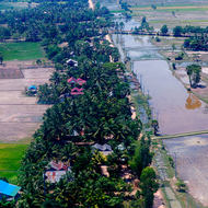 Small village and rice paddy fields on the outskirts of Siem Reap.