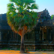 The second of two ancient library buildings in the grounds of Angkor Wat.