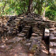 Remains of an old bridge into the Angkor Thom complex, now taken over by a tree.