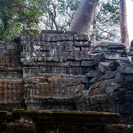 Tree growing from the roof of the entrance tower of the southern gallery of enclosure III of Ta Prohm.
