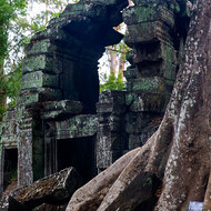 Amazingly an arch still stands in the jungle ravaged Ta Prohm.