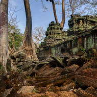 Laterite and siltstone masonry lie surrounded by standing sections of Ta Prohm and the abundant trees.