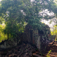 Tower at the north-east corner of the outer enclosure of Beng Mealea temple, now home of a sprawling tree.