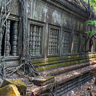 Surprisingly standing up well, a gallery of windows at Beng Mealea temple with tree roots trailing.