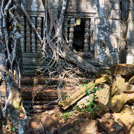 Gallery, windows and trees at Beng Mealea.