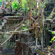 Looking down at the ravages of the jungle on the small courtyard between the inner sanctuary and the inner enclosure of the Beng Mealea temple.
