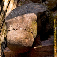 Stone carving of a head, possible turtle, in the collapsed rubble in the inner sanctuary of the Prasat Thom temple.