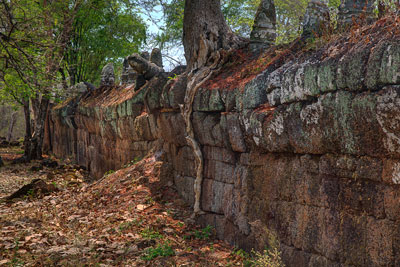 Thumbnail image of Tree growing atop the laterite wall around the...