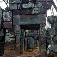 Bearing the weight, ruins of a temple in the jungle.