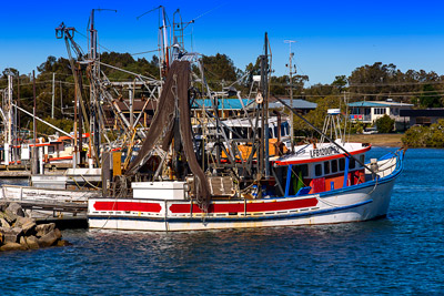 Thumbnail image of Fishing fleet back at harbor, net drying time...