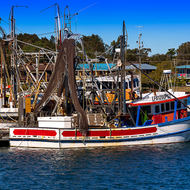 Fishing fleet back at harbor, net drying time on the Clarence River.