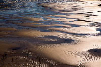 Thumbnail image ofThe tide's out, leaving abstract patterns.