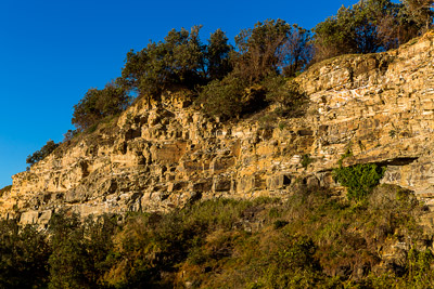 Thumbnail image ofHeavily jointed sandstone cliff at Wooli Point.