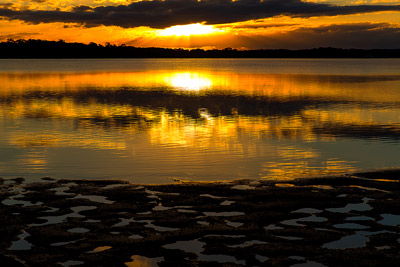 Thumbnail image ofSunrise over the river flats at low tide on the...
