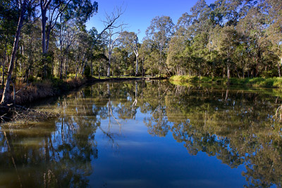 Thumbnail image ofWinter afternoon reflections on the Scrubby Creek...