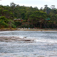 Small beach and settlement adjacent to the Tessellated Pavement.