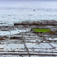 View east from the Tessellated Pavement.