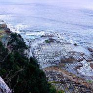 View east from the Tessellated Pavement towards the Tasman Sea.