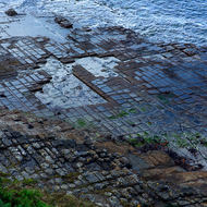 Looking down on the Tessellated Pavement natural rock formation.