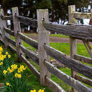 Split timber fence and garden at the rear of the Commandant's house.