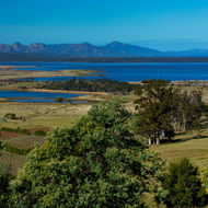 Devil's Bend vineyard, Great Oyster Bay and the Freycinet Peninsula.