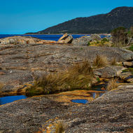 Rocky shoreline and tidal pools at Bicheno.