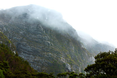 Thumbnail image ofMisty cliff face rising from Dove Lake to Cradle...