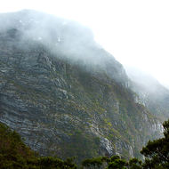 Misty cliff face rising from Dove Lake to Cradle Plateau.